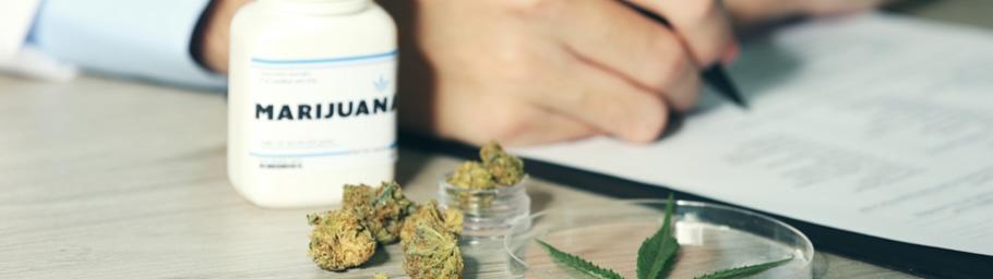 Bureaucratic Hurdles of Cannabis Research