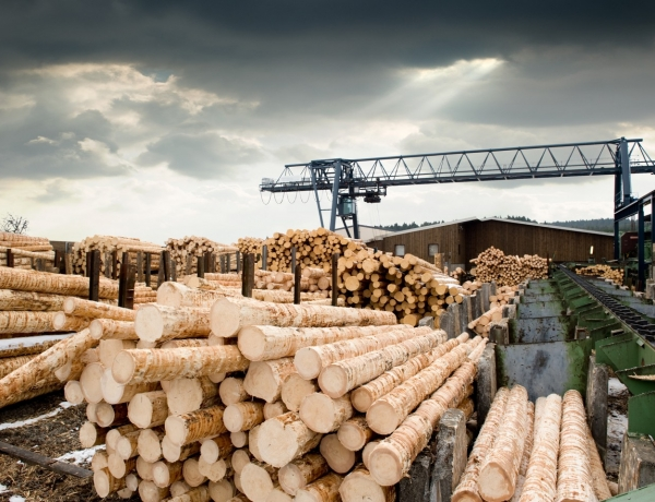 B.C. Wildfires Cause Spike in Lumber Pricing