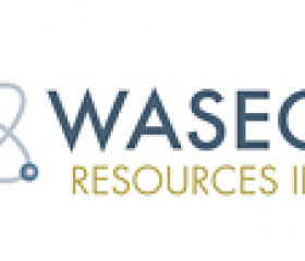 Waseco Options Nevada Gold Property to SSR Mining