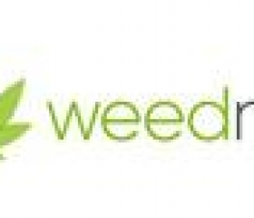 WeedMD Announces Delayed Filing of its 2020 Annual Financial Disclosure